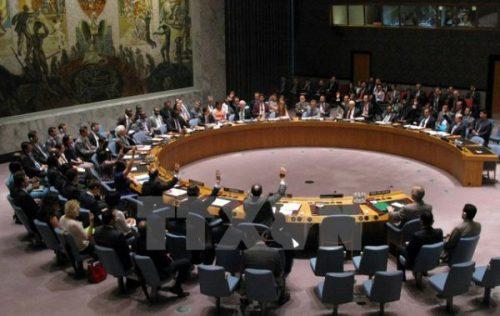 Phiên họp của Hội đồng Bảo an Liên hợp quốc về vấn đề Syria, ngày 14/7/2014. (Ảnh: Tư liệu TTXVN)