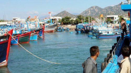Thi thể nam thanh niên bị cột đá dìm dưới cảng cá - Ảnh 1.