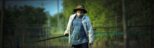 Lạ lùng nghề kéo dây... chạy ở Sài Gòn - 22