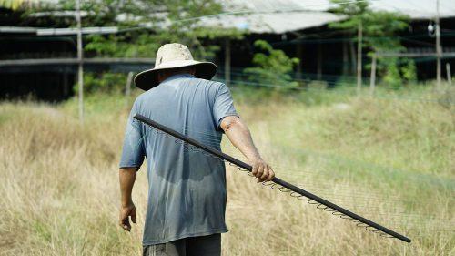 Lạ lùng nghề kéo dây... chạy ở Sài Gòn - 4
