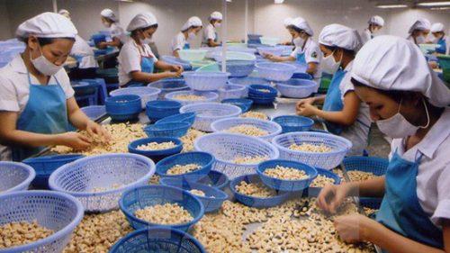 Bình Phước: Giám sát an toàn - vệ sinh lao động tại doanh nghiệp - Ảnh 1.