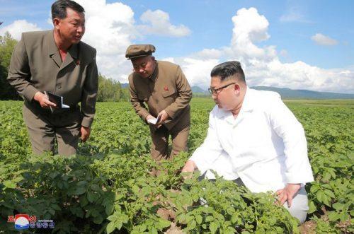 Triều Tiên thừa nhận hạn hán khủng khiếp nhất trong một thế kỷ - 1