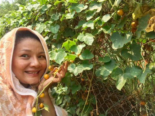 Khu vườn rộng 5.000m2 tại quê nhà Bình Phước của 'nữ hoàng cảnh nóng'