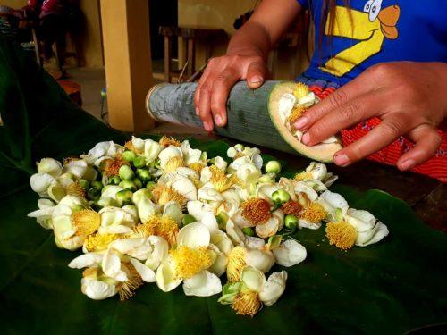 """bo hoa che co thu trong ong tre, """"trot"""" uong mot lan """"say"""" ca doi hinh anh 3"""