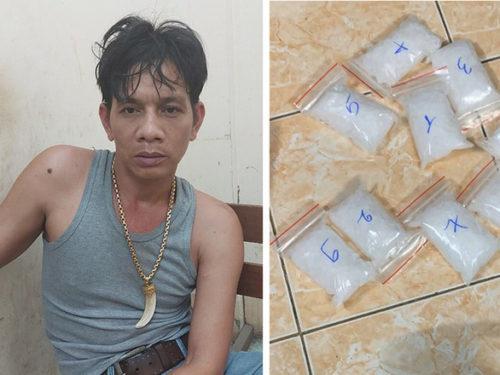 Tổ chức nuôi gà đá ở vùng ven TP.HCM làm 'vỏ bọc' giao dịch ma túy - Ảnh 1.