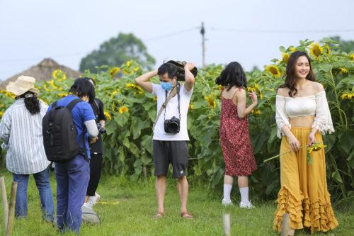 Hoa hướng dương tuyệt đẹp, giới trẻ đổ xô đến chụp ảnh - Ảnh 5.