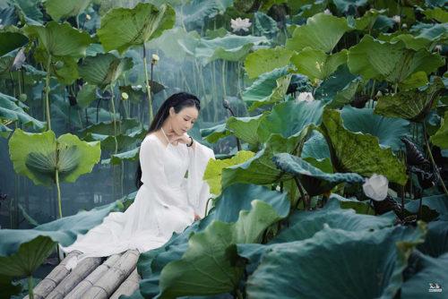 """Ca sĩ Hoa Trần hoá tiên nữ vườn sen, cố tình """"biến hình"""" hit của Hoài Lâm - Ảnh 2."""