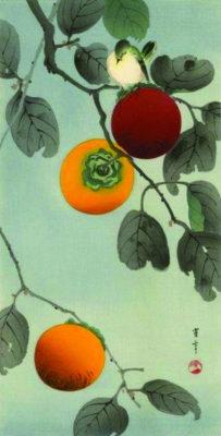 Mùa thu ăn một quả hồng... - Ảnh 1.