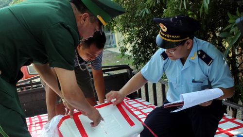 Trung Quốc tăng kiểm soát chất lượng: Xuất khẩu trái cây Việt Nam gặp khó - Ảnh 2.