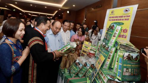 Trực tiếp: Thủ tướng đối thoại với nông dân - Ảnh 2.