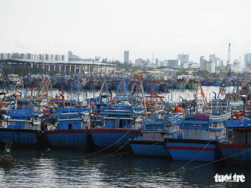 2 tàu chìm, 46 tàu Bình Định đang vào bờ, cấp bão không giảm - Ảnh 2.