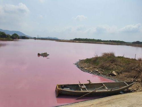 Nước trong đầm chuyển thành màu hồng, bốc mùi hôi thối /// NGUYỄN LONG