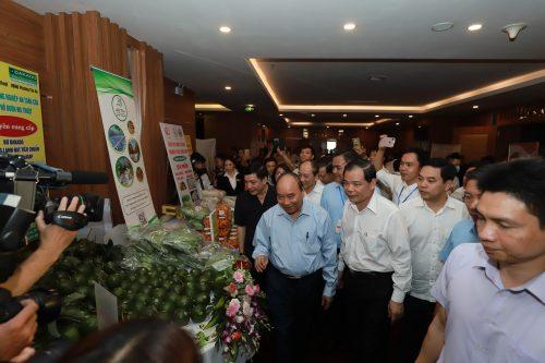 Thủ tướng Nguyễn Xuân Phúc và 3 lần trực tiếp đối thoại với nông dân - Ảnh 6.