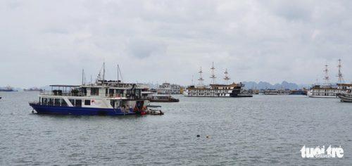 Quảng Ninh, Hải Phòng tạm dừng hoạt động tham quan, du lịch - Ảnh 1.